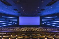 """""""Die Filmwirtschaft wird großen Schaden nehmen"""""""